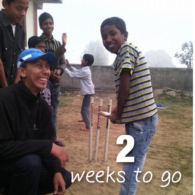cricket_images_2weeks